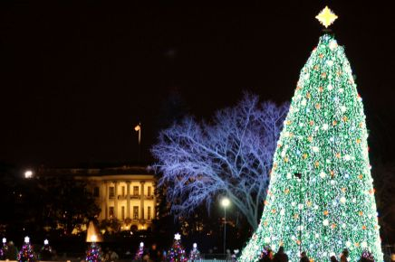 2010 National Christmas Tree.